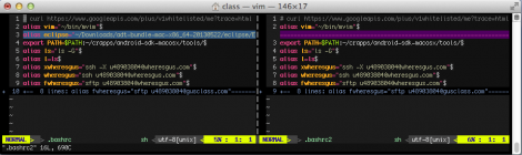 A demo of VimDiff with my color scheme.